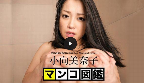 マンコ図鑑 小向美奈子